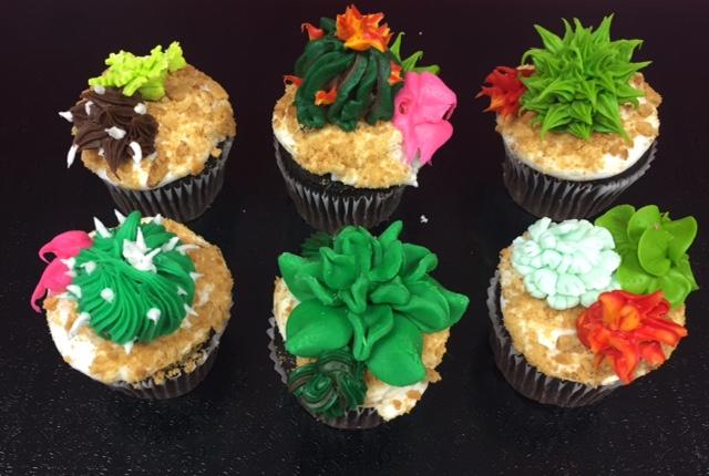 Winedown Wednesday Succulent Cupcakes (BYOB)
