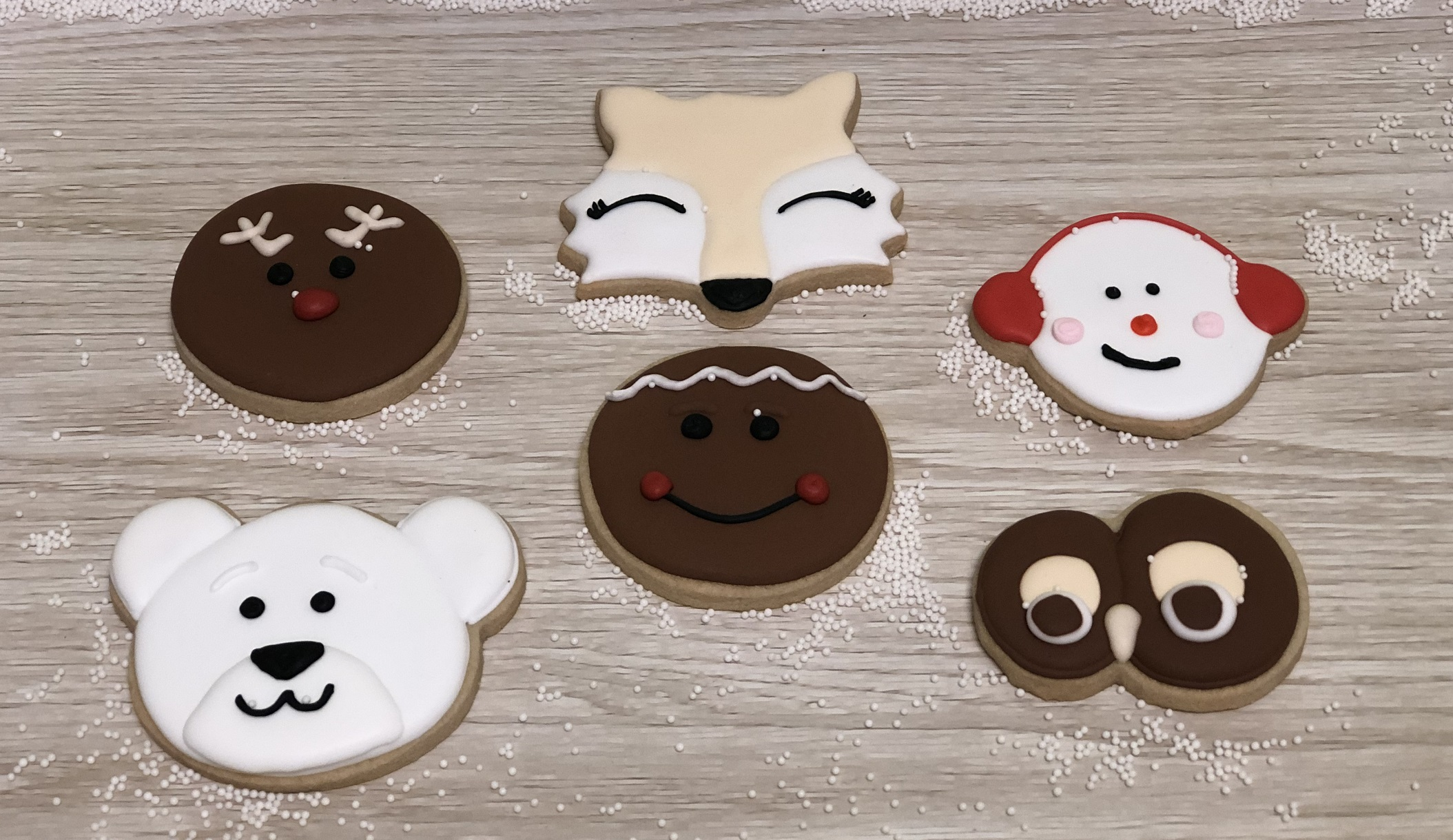 Kid's Camp: Faces of Winter Cookies