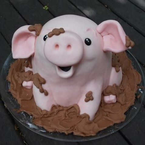 Muddy Piggy Cake